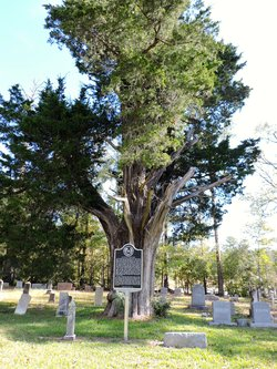 Oil Town Cemetery