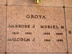 Ambrose J. Groya