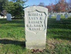 Lucy M Bushey