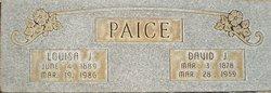 David John Paice