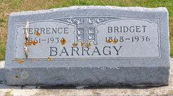 Bridget Theresa <I>Treston</I> Barragy