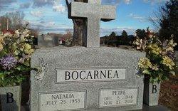 Petre Bocarnea