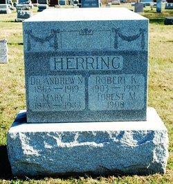 Dr Andrew N. Herring