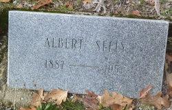 Albert Henry Seely