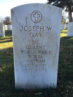 Joseph W Gay