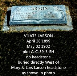 Vilate Larson