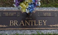 Lillian Ann <I>Allee</I> Brantley