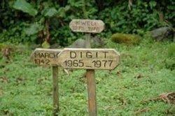 Digit (no surname)