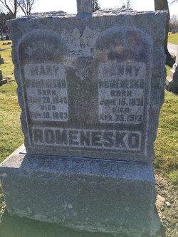 Henry Romenesko