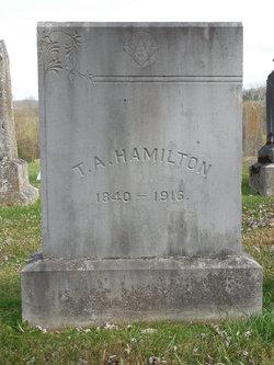 Tilman Anderson Hamilton