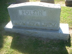 Albert M Polzin