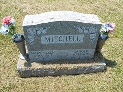 Arnold W. Mitchell