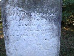 Jacob S Bigelow