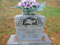 Charles Mason Horn