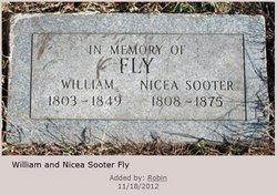 William Asher Fly