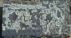 Viney L Webster