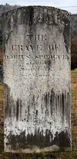Darius Sprague