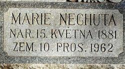 Marie <I>Brda</I> Nechuta