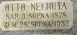 Otto Nechuta