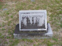 """Asa Olin """"Acey"""" Chestnut"""