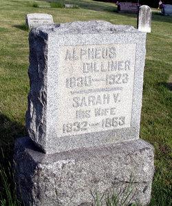 Sarah Virginia <I>John</I> Dilliner