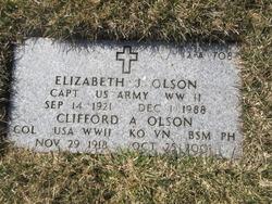 Elizabeth J Olson
