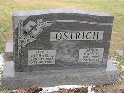 Michael J Ostrich