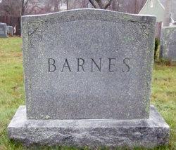 Lucy Ann <I>Snow</I> Barnes