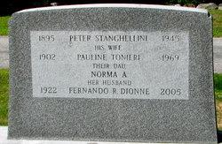 Peter Stanghellini