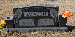 Clifford E. Sapaugh