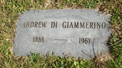 Andrew Di Giammerino