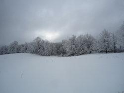ColdWinterNight15