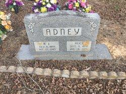 Alice Elizabeth <I>Linker</I> Adney