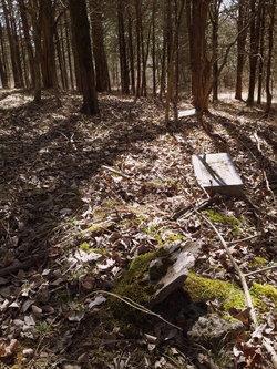 James Cotton Graveyard