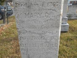 Mary C Goodwin