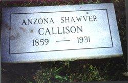 Anzona Drucilla <I>Shawver</I> Callison