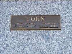 Ossie Ann <I>Adams</I> Cohn