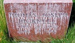 Thomas Joseph Bicknell