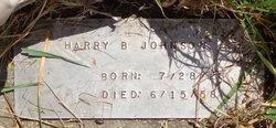 Harry Begay Johnson