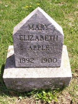 Mary Elizabeth Apple