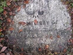Thomas Davy
