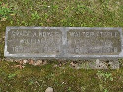 Walter Steele Williams