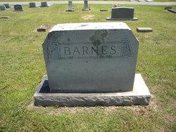Lou E. <I>Craig</I> Barnes