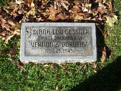 Diana Lou Gessner
