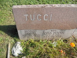 Anna <I>Penna</I> Tucci
