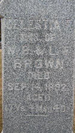 Celestia F Brown