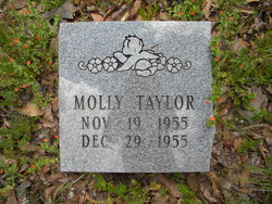 Molly Taylor
