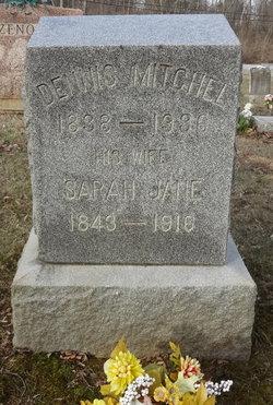 Sarah Jane <I>Caple</I> Mitchell