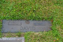 Helen Viola <I>Salander</I> David