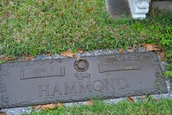 Asher P Hammond